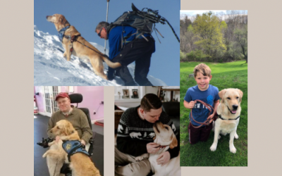How a Service Dog Can Change a Life